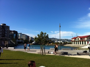 Sensational views from the grass area at St Johns on a cracking Wellington day.